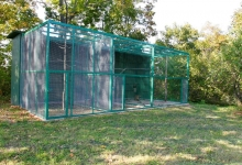 Savvaļas putnu rehabilitācijas stacija